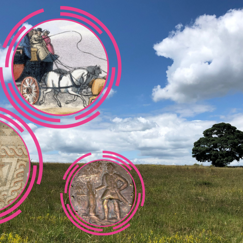 Photograph of a landscape with field and tree and circle icons with coins and paintings