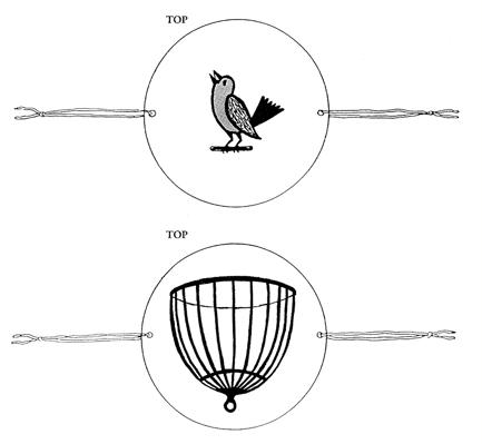 How to make a thaumatrope